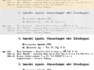 Halb-automatische Binarisierung von Digitalisaten aus dem Internet Archive