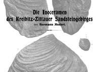 Monographie zu den Inoceramen der jüngeren Schichten der sächsisch-böhmischen Kreide
