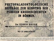 E. Bayer über die cenomane Flora der Peruc-Korycany Formation in Tschechien