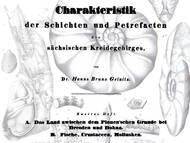 Geinitz zweiter Teil von 1840