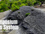 9th International Sympsoium on the Cretaceous System 2013