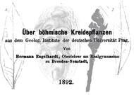 H. Engelhardt, 1892: Über Pflanzen aus der tschechischen Kreide