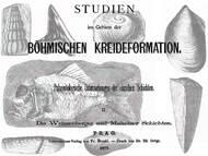 A. Fritsch: Über die marinen Weissenberger Schichten der böhmischen Kreide