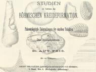 A. Fritsch, 1883: Die Iserschichten