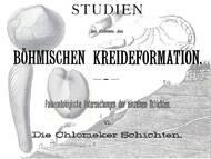 A. Fritsch, 1897: Über die sogenannten ehemaligen Chlomeker Schichten und deren Fossilien (Turon-Coniac) der böhmischen kreide