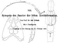 A. Fritsch: Über Reptilien aus der böhmischen Kreide