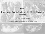 A. Fritsch: Saurierfunde aus der Jizera Formation