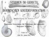 A. Fritsch: Abbildungen zum ersten Teil der Studien der böhmischen Kreideformation: Perucer Schichten