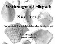 H.B. Geinitz: Vierter Teil der Characteristik der Petrefacten