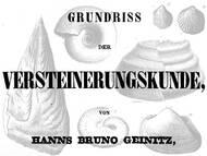 H.B. Geinitz Versteinerungskunde