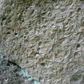 Detailansicht Coschützer Muschelfelsen