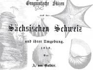 A. von Gutbier: Geognostische Skizzen
