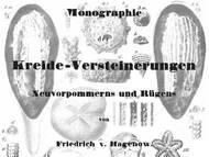Hagenow 1839-1842: Fossilien von Rügen