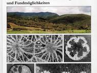 H. Löser: Korallen aus Jura und Kreide