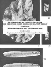 Über Ammoniten aus dem Cenoman-Turonen Grenzbereich in Mähren, Tschechische Republik