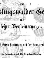 Monographie zu den Kreideversteinerungen um Kieslingswalde - heute Sławnikowice, Polen