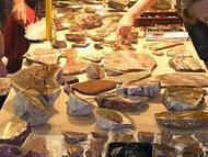 Foto: V. Westphal - FG Mineralogie und Paläontologie Radebeul