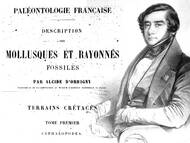 Orbigny über die Kreide von Frankreich; Quelle: de.wikipedia.org