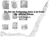 Über obercenomane Schichten bei Sázava (Zohsee) nahe Lanškroun (Landskron) im Schönhengstgau (Hřebečsko)