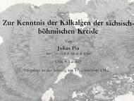 J. Pia über Lithothamnien (Kalkalgen) in der sächsisch-tschechischen Kreide