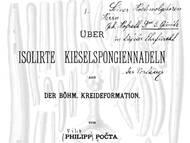 Ph. Pocta: Spicula von Kieselschwämmen der böhmischen Oberkreide