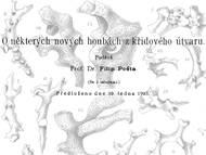 F. Pocta über Schwämme aus der Gegend von Kutná Hora (Kuttenberg)