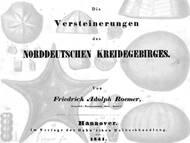 F.A. Roemers Klassiker zu den Kreidefossilien der Norddeutschen Kreide