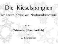 A. Schrammen über Hexactinellida, 1. Teil