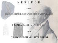 K. M. Sternbergs Monographie von 1825 - 1838