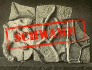 Vom Schwamm zum Spurenfossil