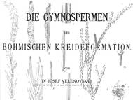 J. Velenovskys Monographie über die Kreideflora (Nacktsamer)