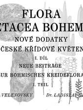Paläobotanische Monographie zur Flora der tschechischen Kreide