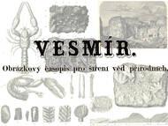 Beiträge in der Zeitschrift Vesmír. Obrázkový casopis pro šírení ved prírodních