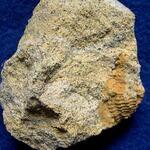 Pennricher Sandstein