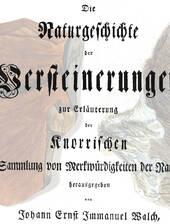 historische Arbeit von Johann Ernst Immanuel Walch über die Sammlung von Georg Wolfgang Knorr