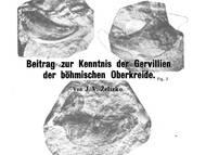 J.V. Zelizko über die Gattung Gervillia aus der böhmischen Kreide